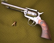 Ruger Single Ten